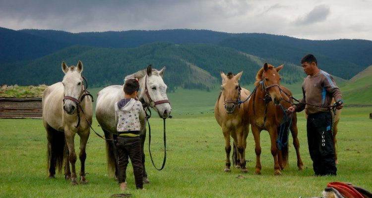 Mongolie, une semaine en trek à cheval à Kharkhorin (1/2)