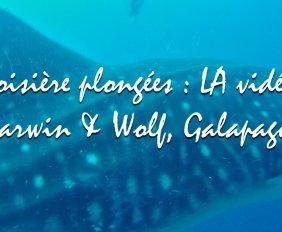 La video Galapagos Darwin & Wolf