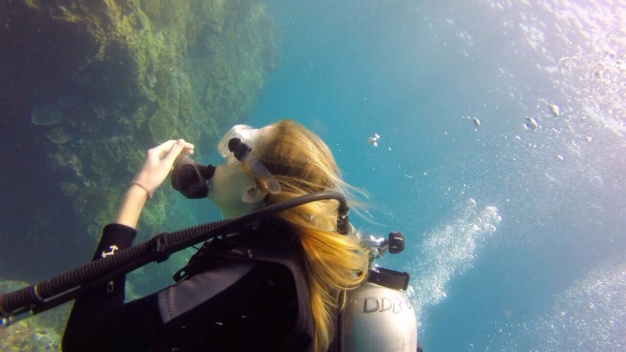 Plongée à Komodo, Indonésie